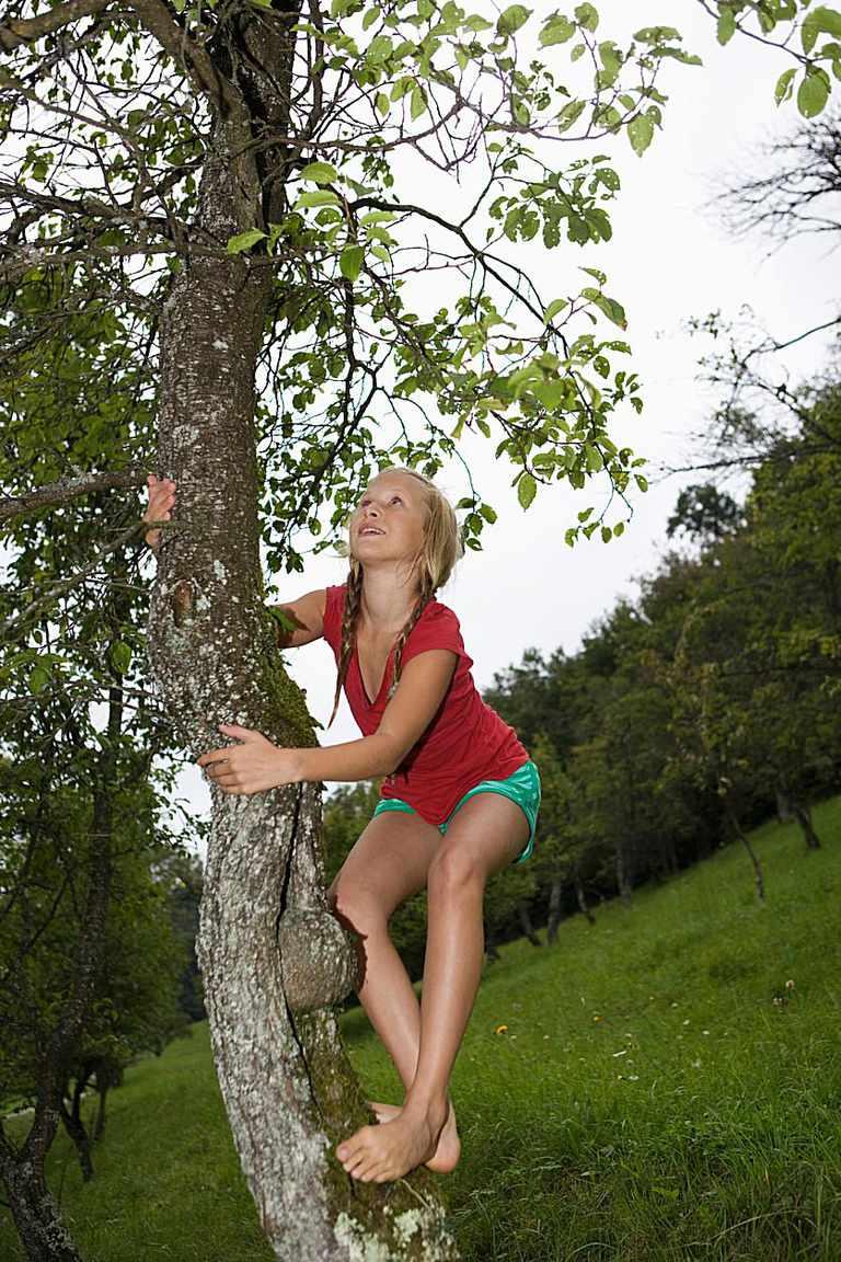 girl climbing tree miracle movie