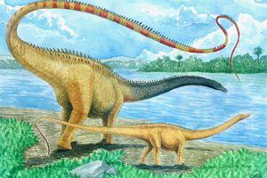 drawing of a seismosaurus