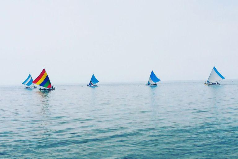 5 sailboats sailing on the ocean