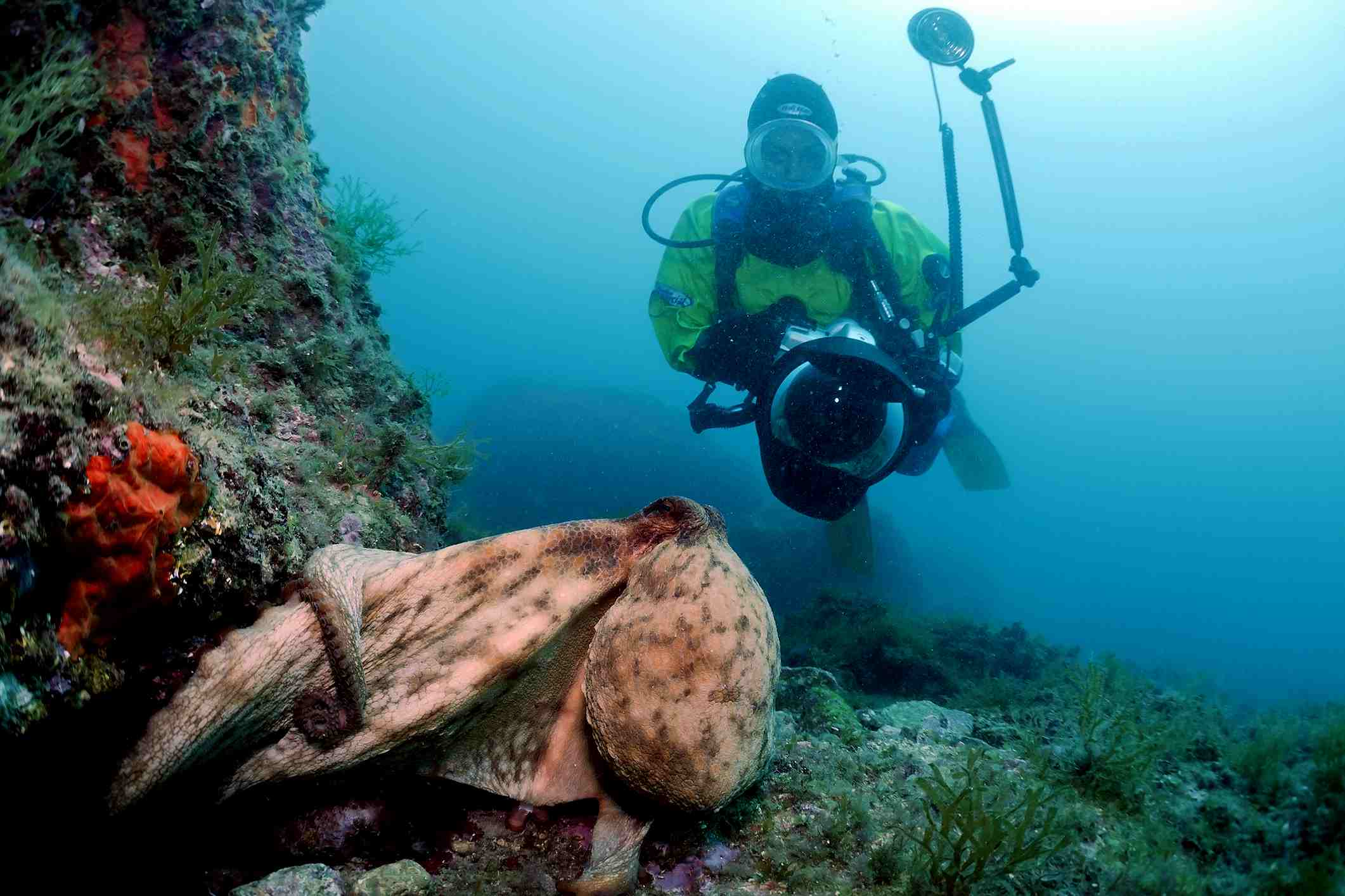 Scuba Diving Buoyancy Control Advice