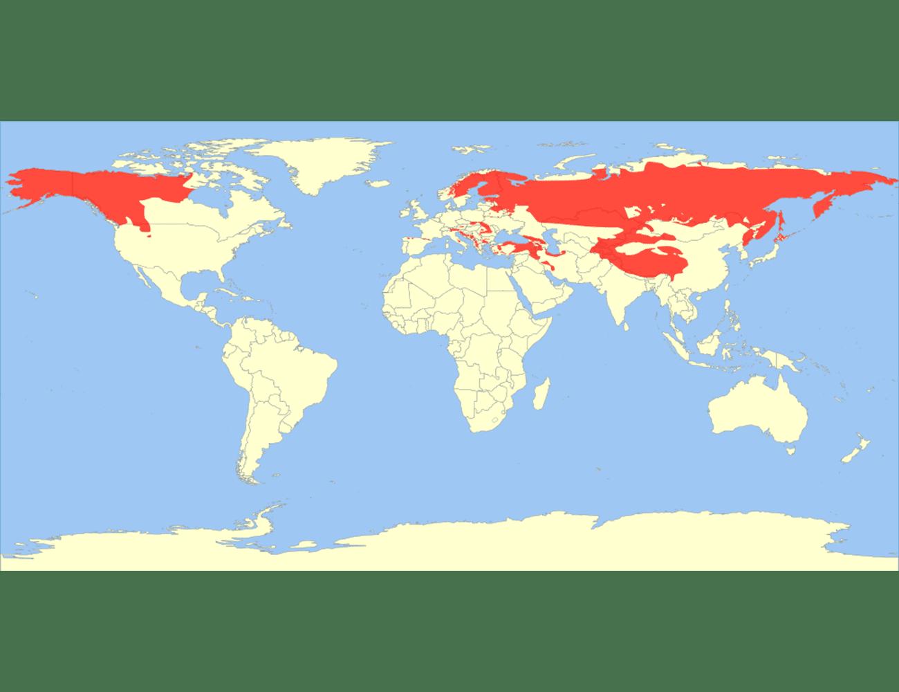 Range of the brown bear in 2010.