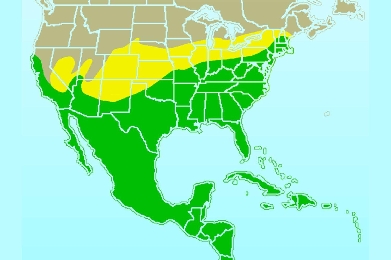 Χάρτης της βόρειας σειράς mockingbird
