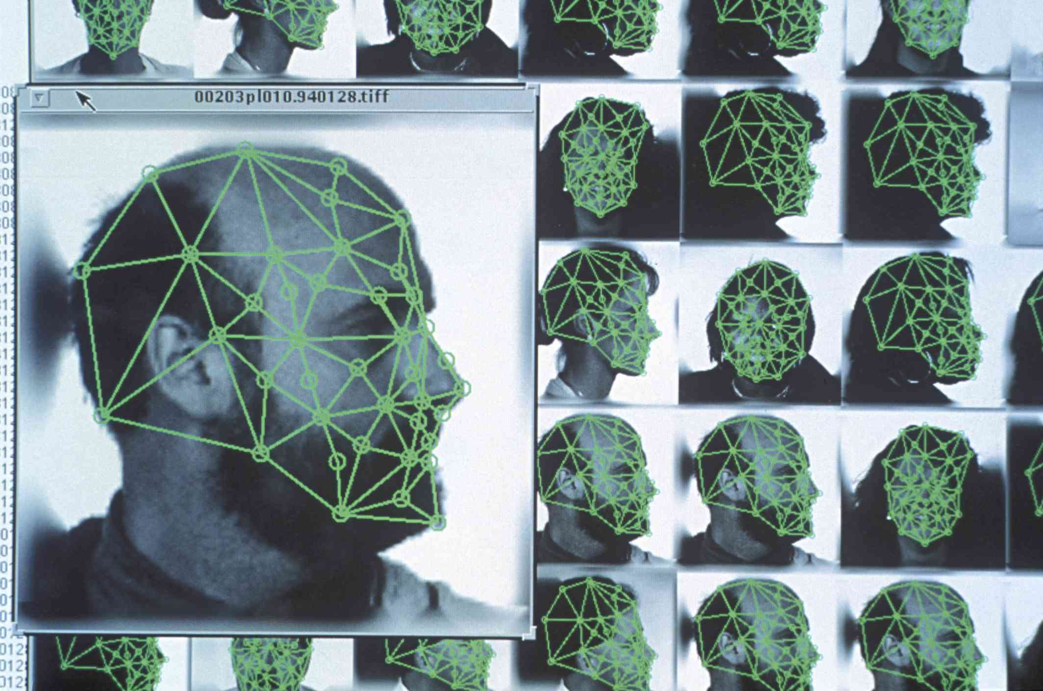 Criminologists use digital facial recognition to identify criminal suspects.
