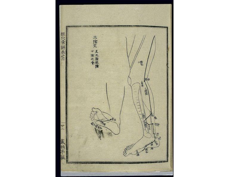 Acu-moxa chart: Kidney channel of foot shaoyin in the legs