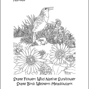 Kansas State Flower and State Bird Coloring Page