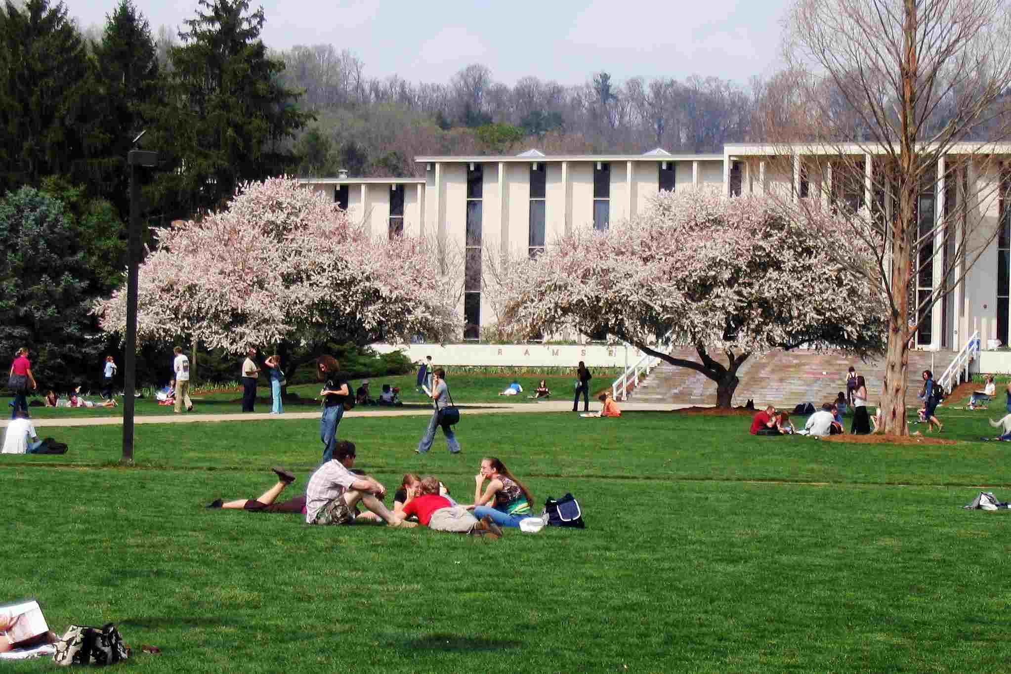 Universidad de Carolina del Norte Asheville