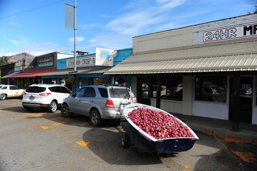 Boatload of apples