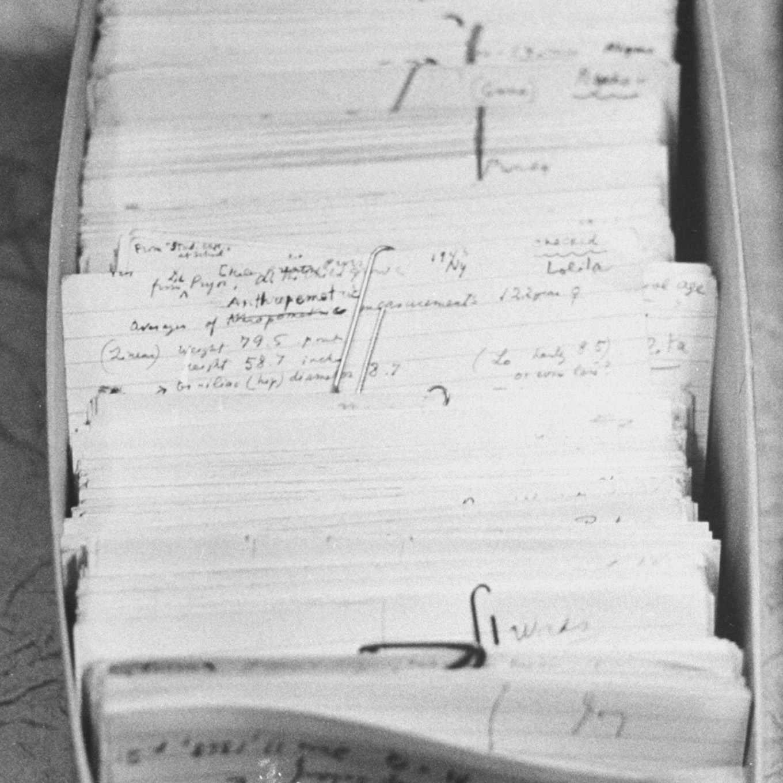 Vladimir Nabokov's File Cards