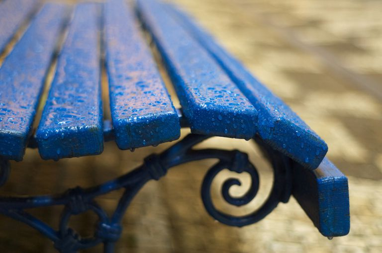 raindrops on bench