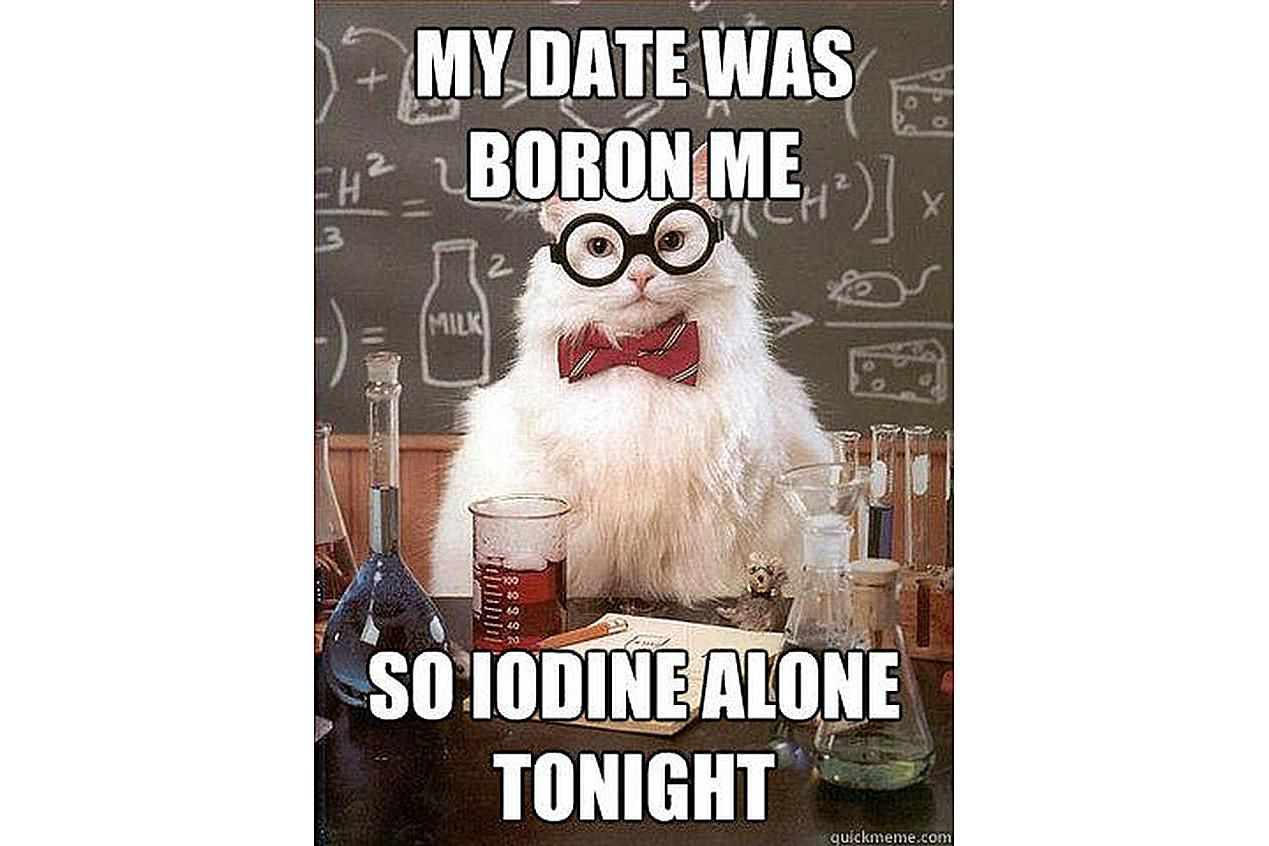 Chemistry Cat explains why he is single tonight.