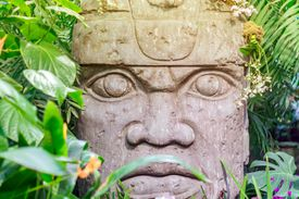 The Olmec are known for the immense stone heads they carved from volcanic basalt rock, which influenced many later Mesoamerican civilizations, like the Maya