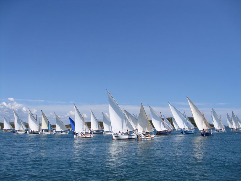 Learn These Key Sailing Terms Before Your Trip