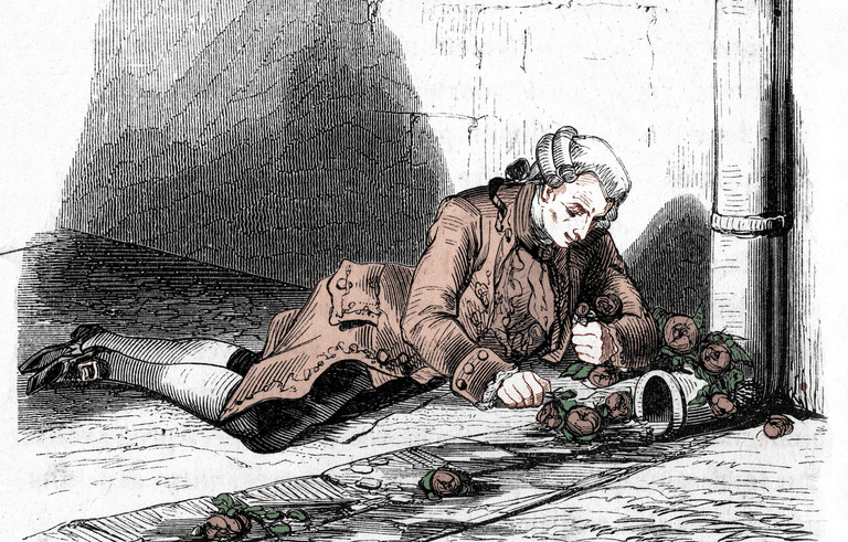 Le Marquis de Sade, jailed in Bictre, playing with roses (France). In March 1803.