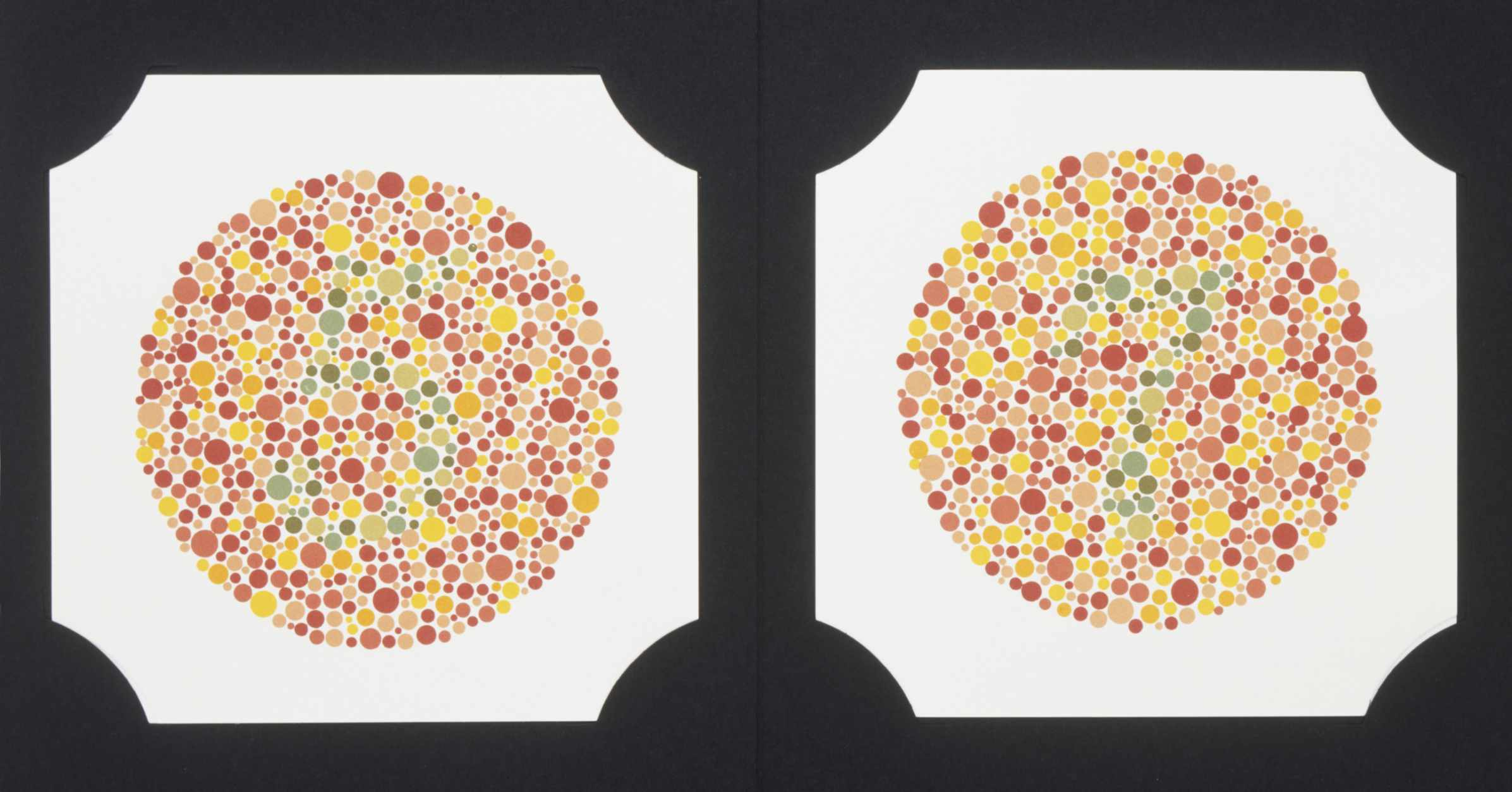 Colorblindness is controlled on the X chromosome