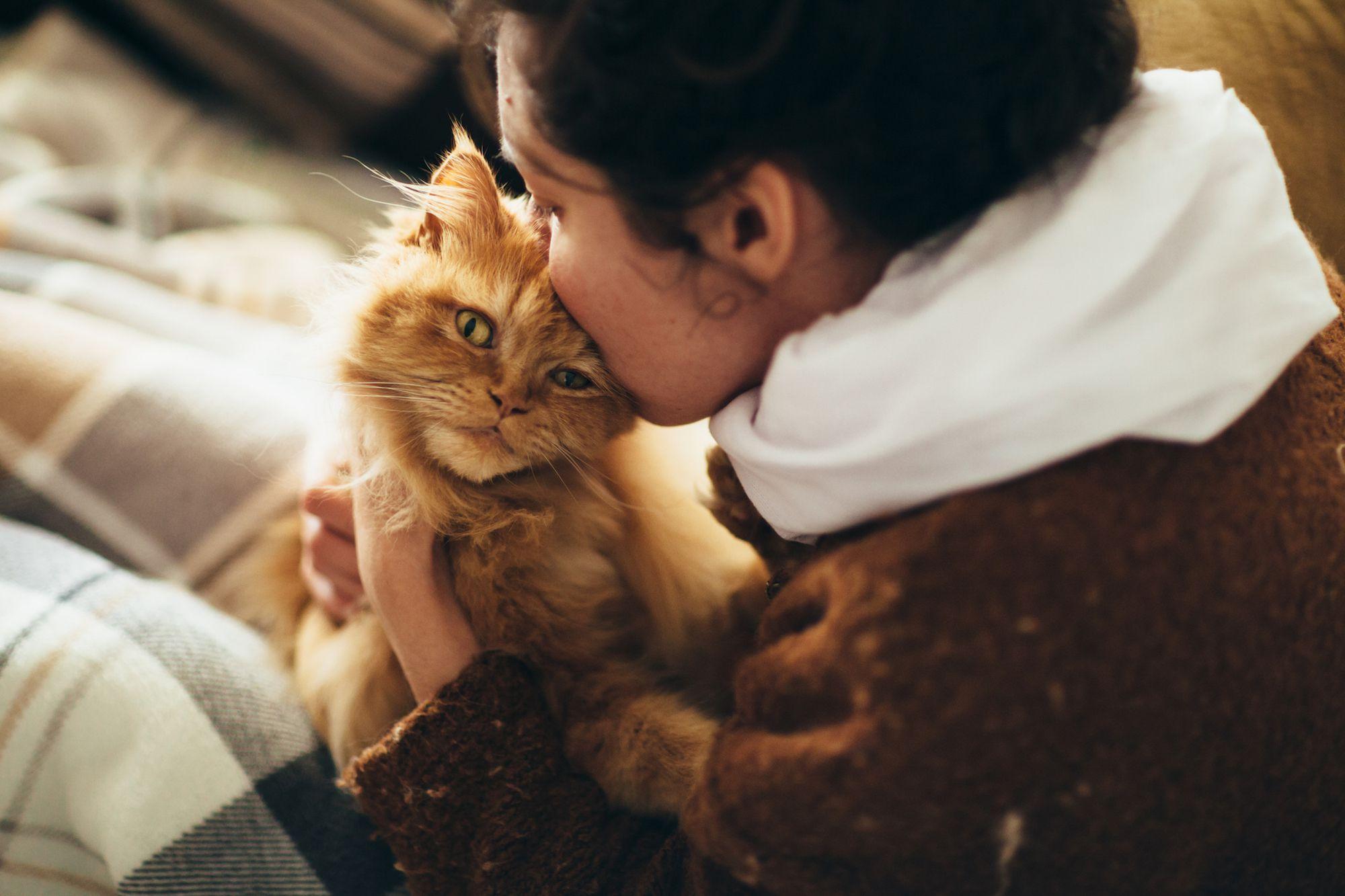 Apa Nama Jerman Dapatkah Anda Berikan Anjing Anda Atau Cat