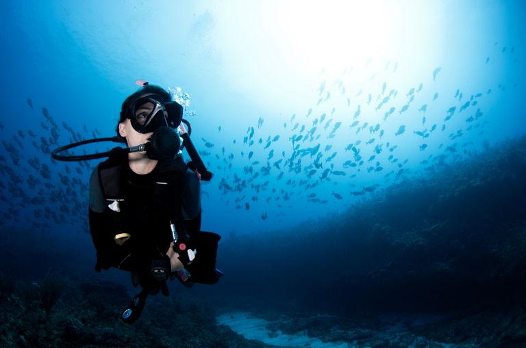 Female Scuba Diver With Small Fish and Surface