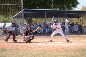 Penn State Altoona baseball spring training