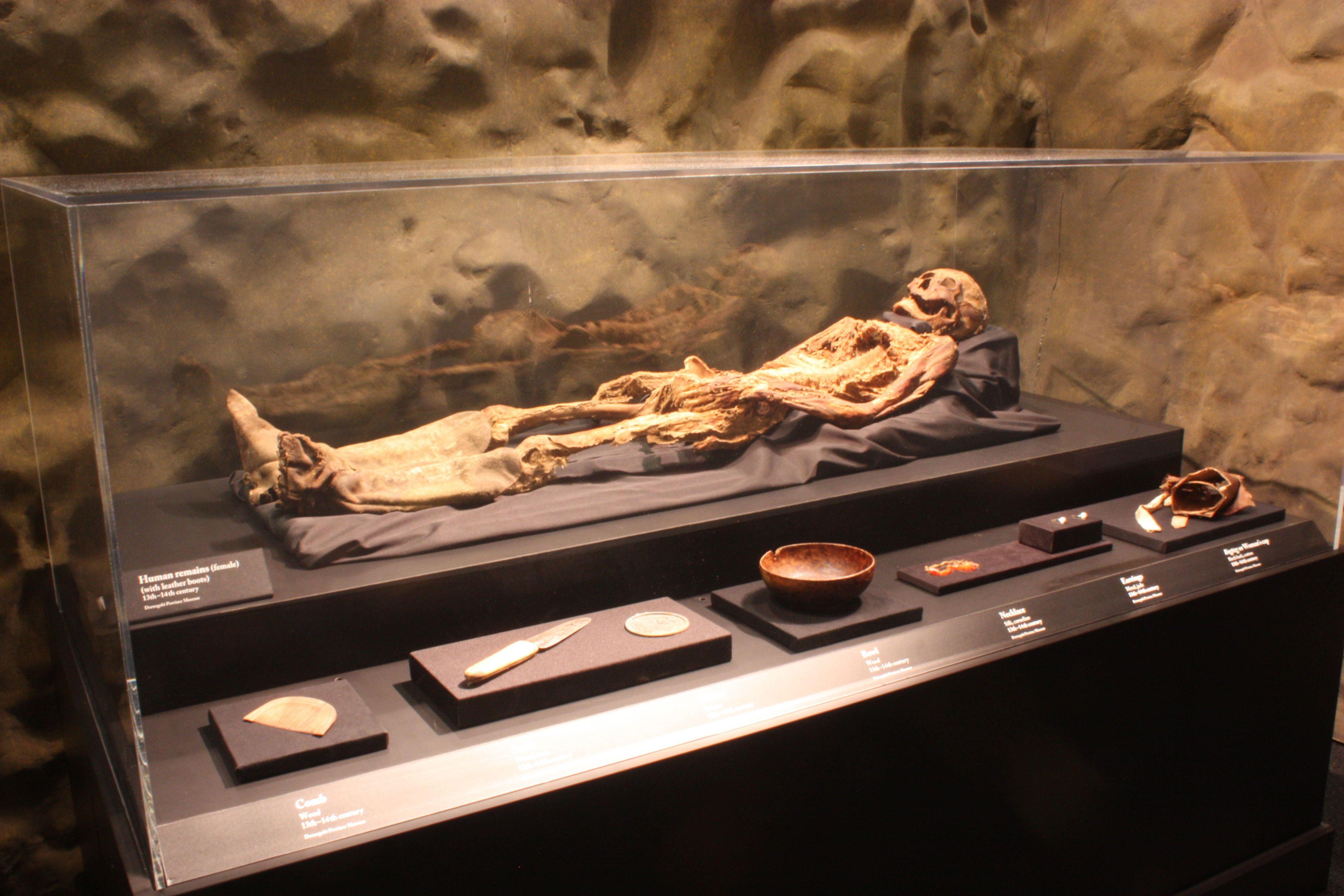 Photo of mummy from the Genghis Khan exhibit at Denver's Museum of Science and Nature