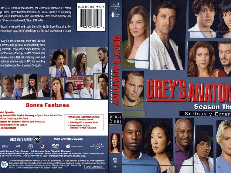 Greys Anatomy Season 3 Synopsis The Main Themes