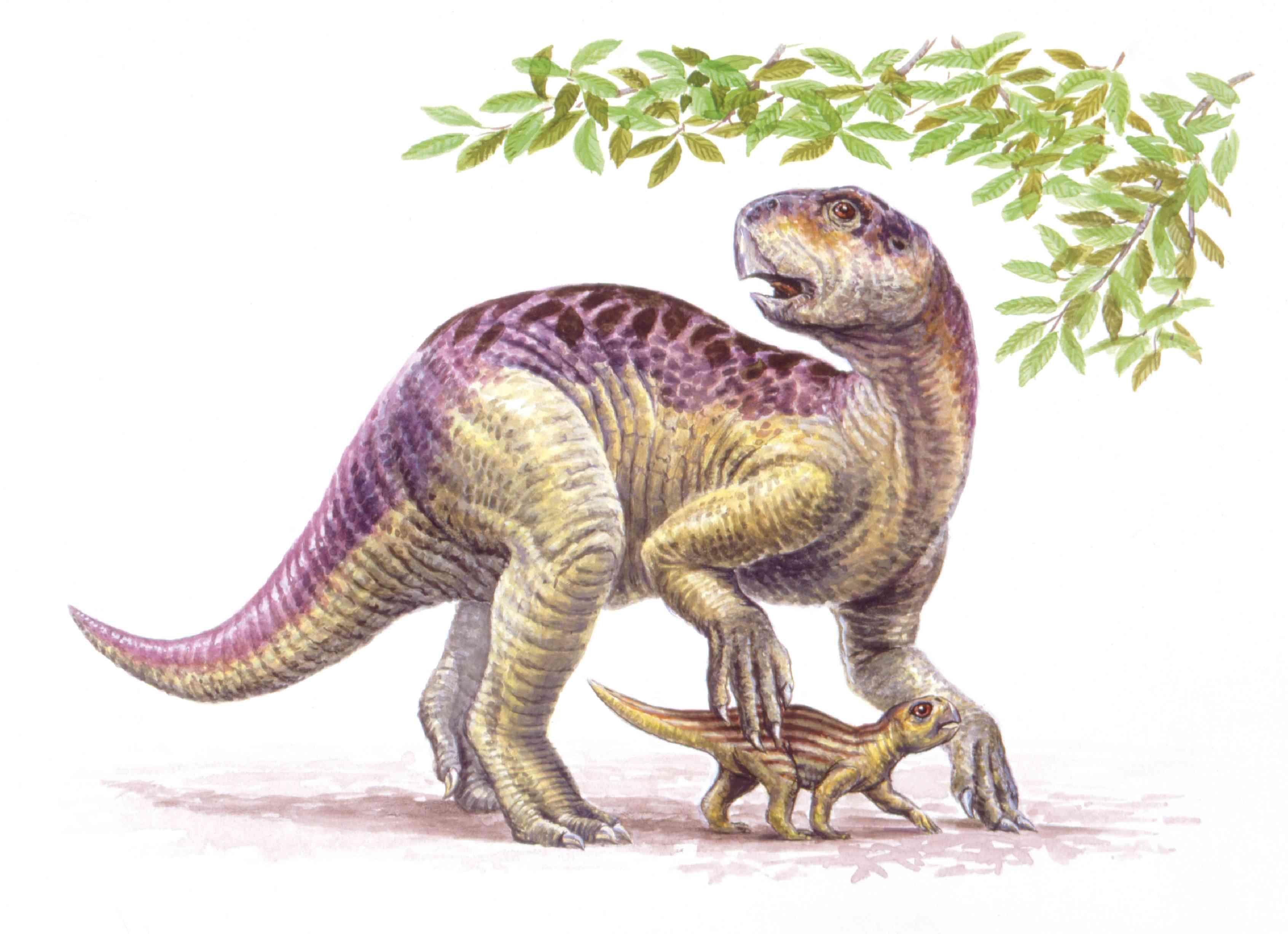 Illustration of Psittacosaurus and calf
