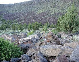 Boulders and talus