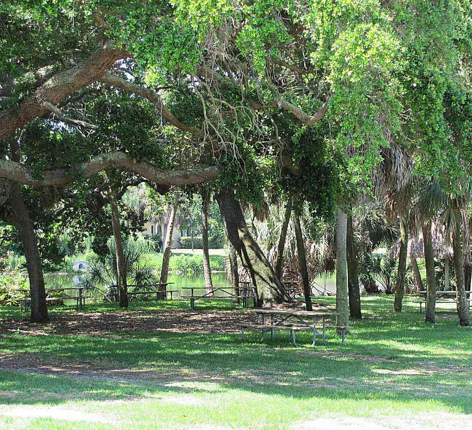 Green Space at Eckerd College