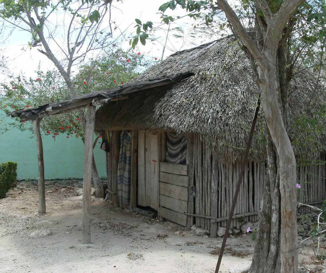 Mayan hut made of sticks and thatched roof.