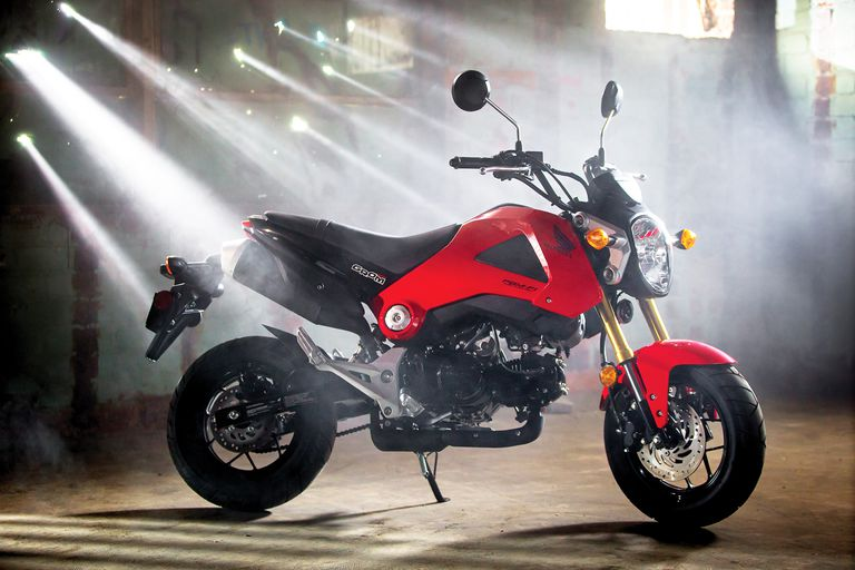 2014 Honda Grom Review