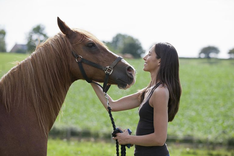 Young woman with horse in field