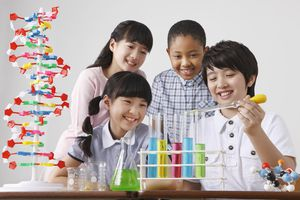 Take this online science quiz to see if you know as much as a 4th grade student.