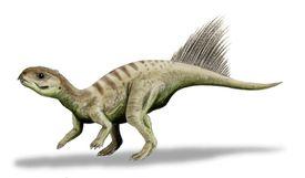 An Illustration of the <i>Chaoyangsaurus</i>
