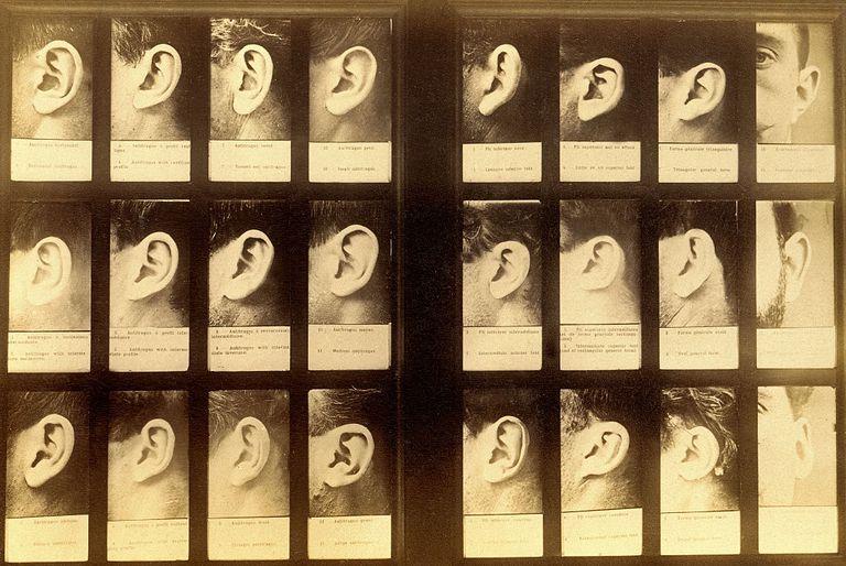 Anthropometric system of Alphonse Bertillon