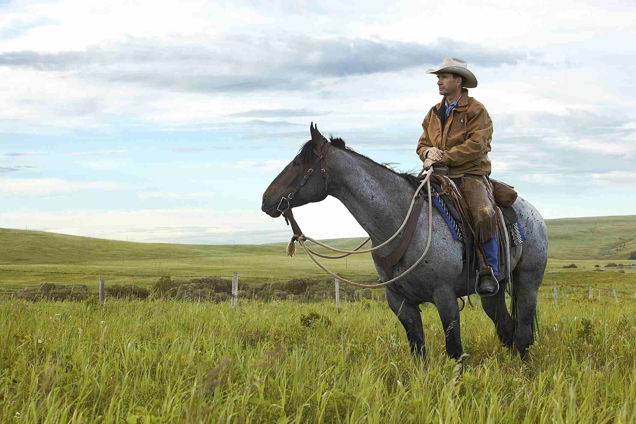 Ranchero a caballo en la pradera
