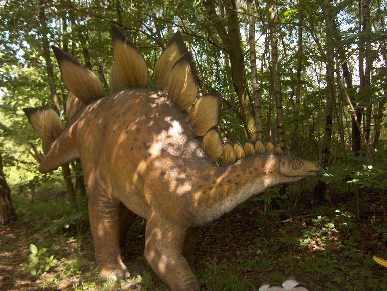 I got Stegosaurus. What Kind of Dinosaur Are You?