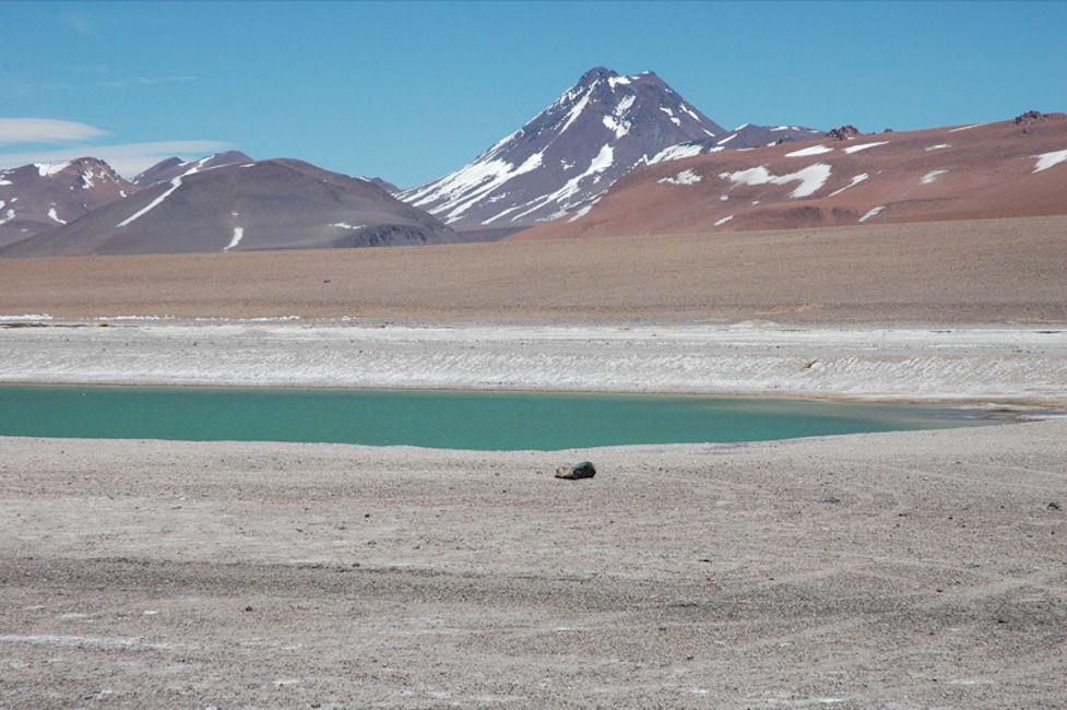 Image of the Acamarachi Pool