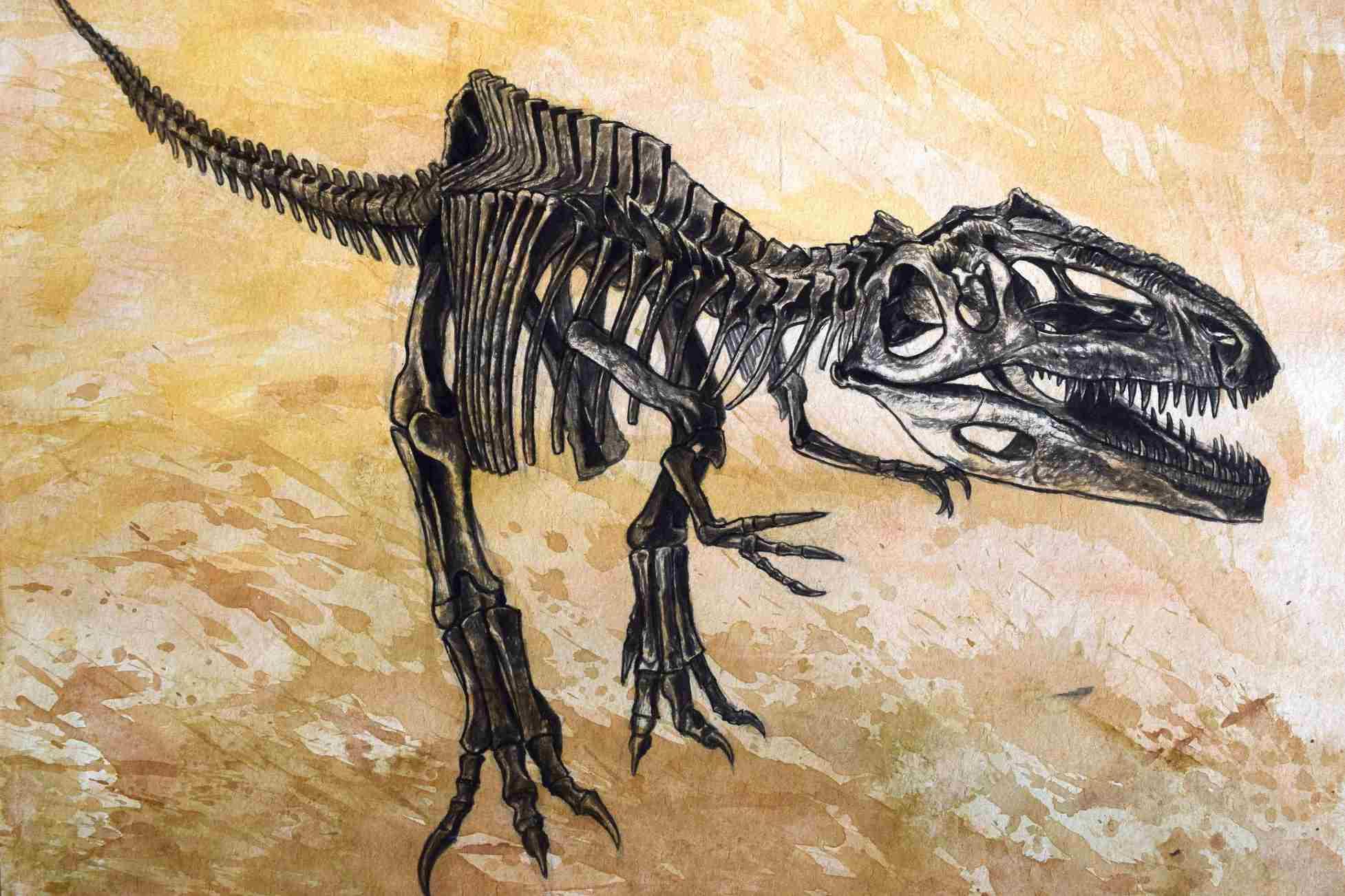 Giganotosaurus dinosaur skeleton on textured background