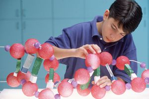 Do you know as much science as an 8th grade student? Take this fun quiz and let's find out!