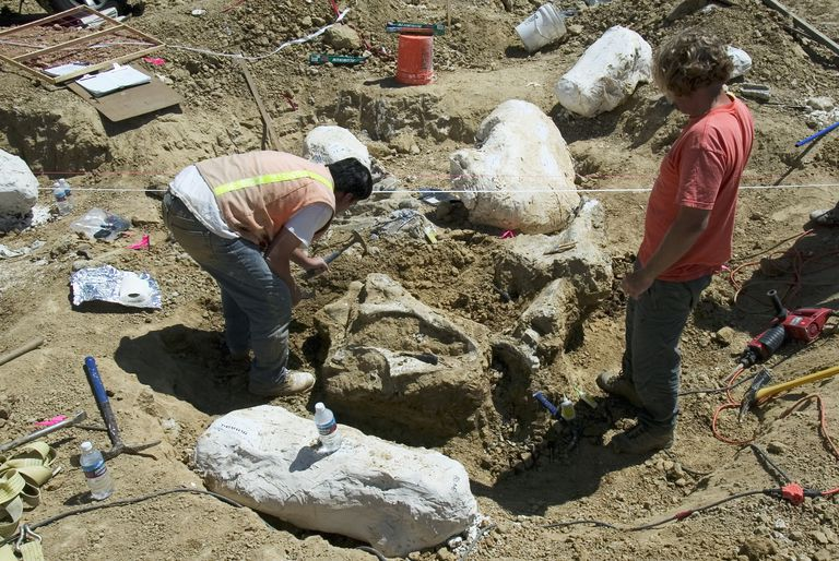 Ice Age Mammoth Remains Unearthed in Southern California