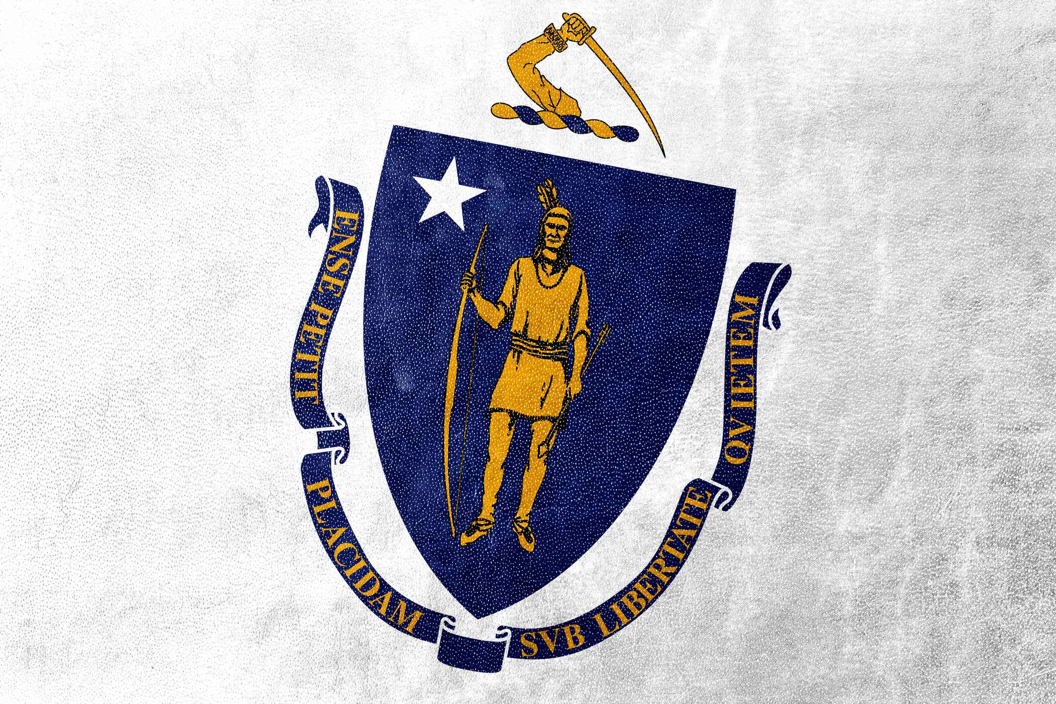 Massachusetts State Flag painted on leather texture