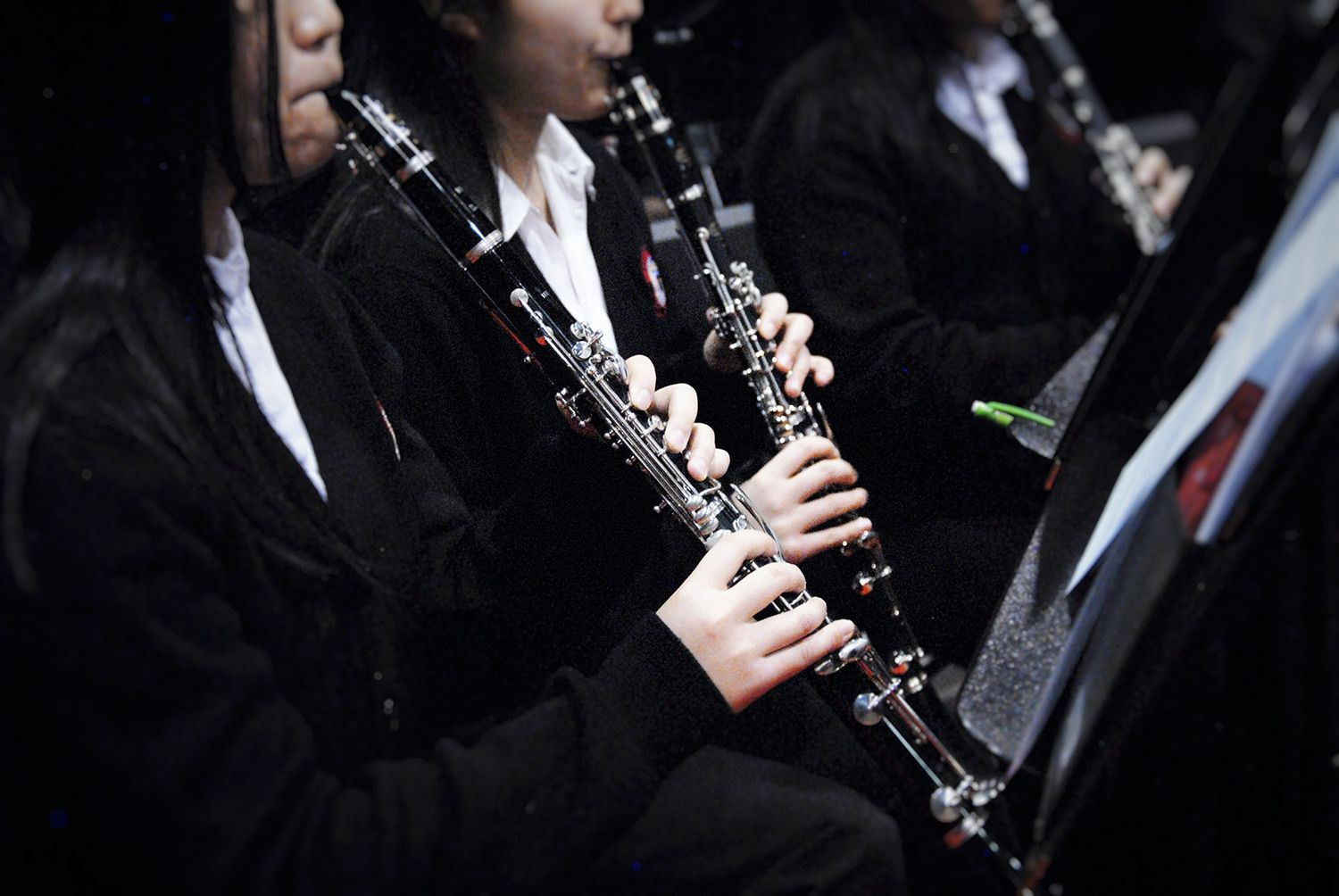 Midsection Of Women Playing Clarinet.