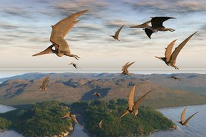 pterodactylus flying over a landscape