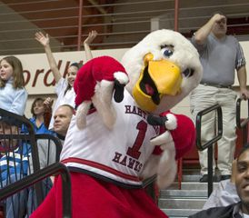 University of Hartford Howie the Hawk