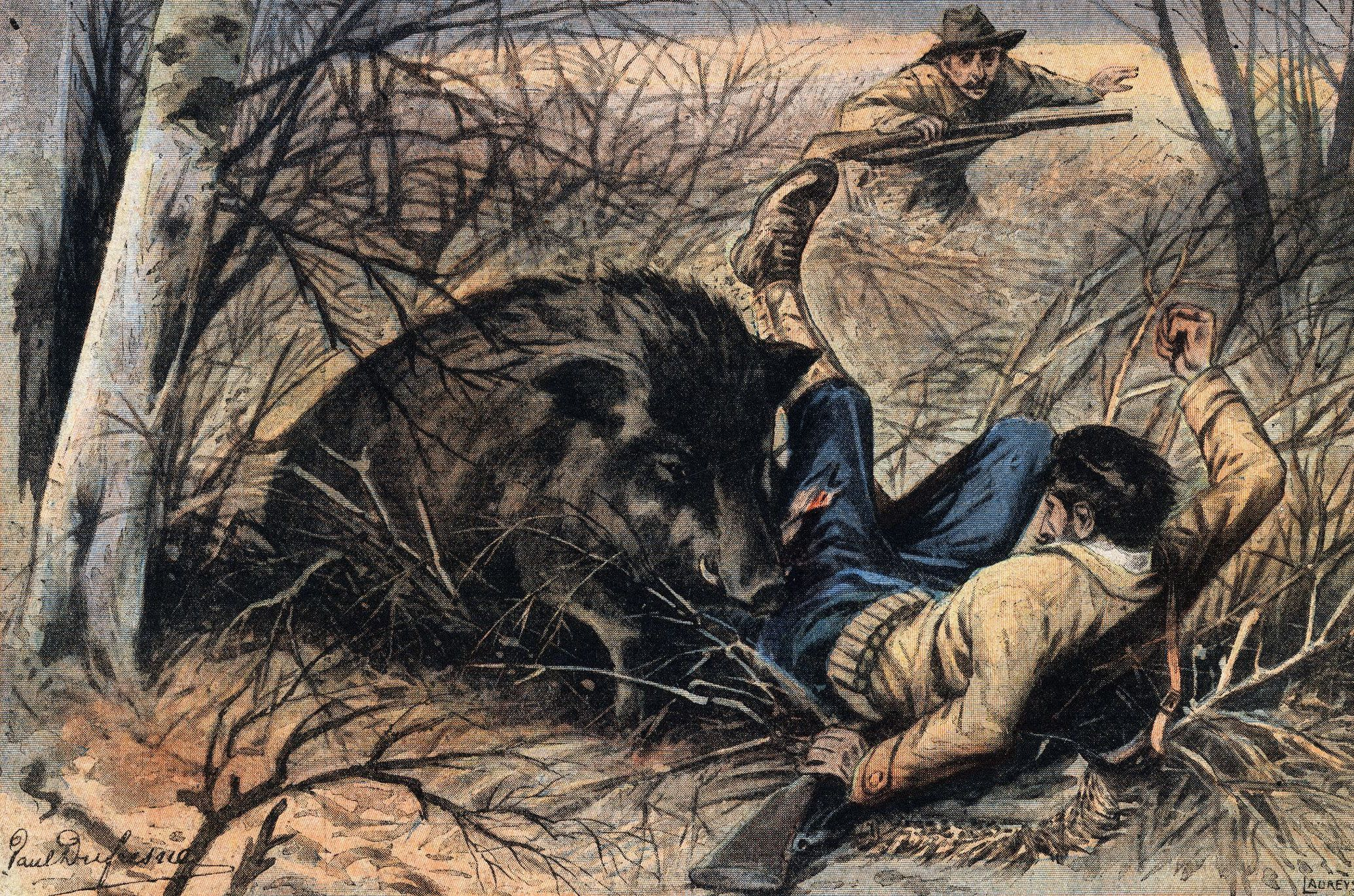Was a 1,800-Lb. Wild Boar Really Shot in Conroe, Texas?