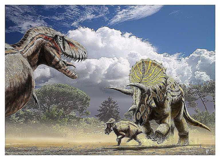 T. rex and triceratops