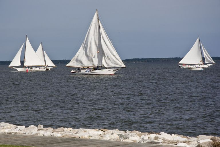 Boats Sailing on the Chesapeake Bay