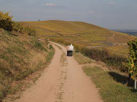 older couple walking on dirt path