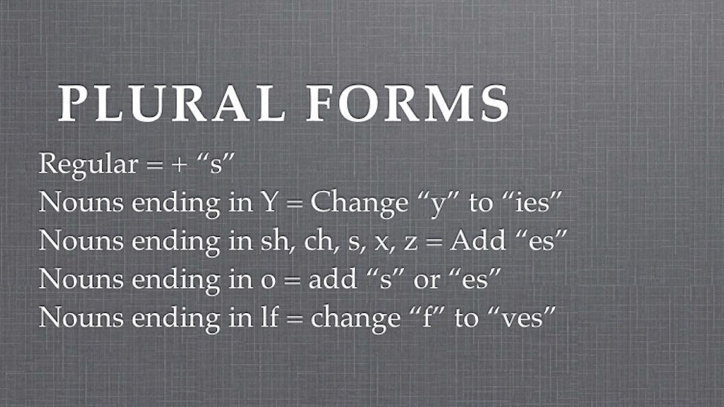 Plural Nouns Forms
