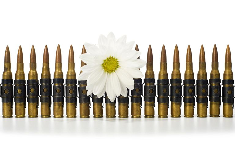 Ammunition Belt - Daisy