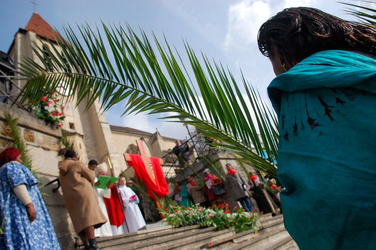 Why Are Palm Branches Used On Palm Sunday