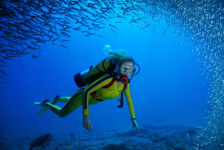 Scuba diving women swims through a school of fish.